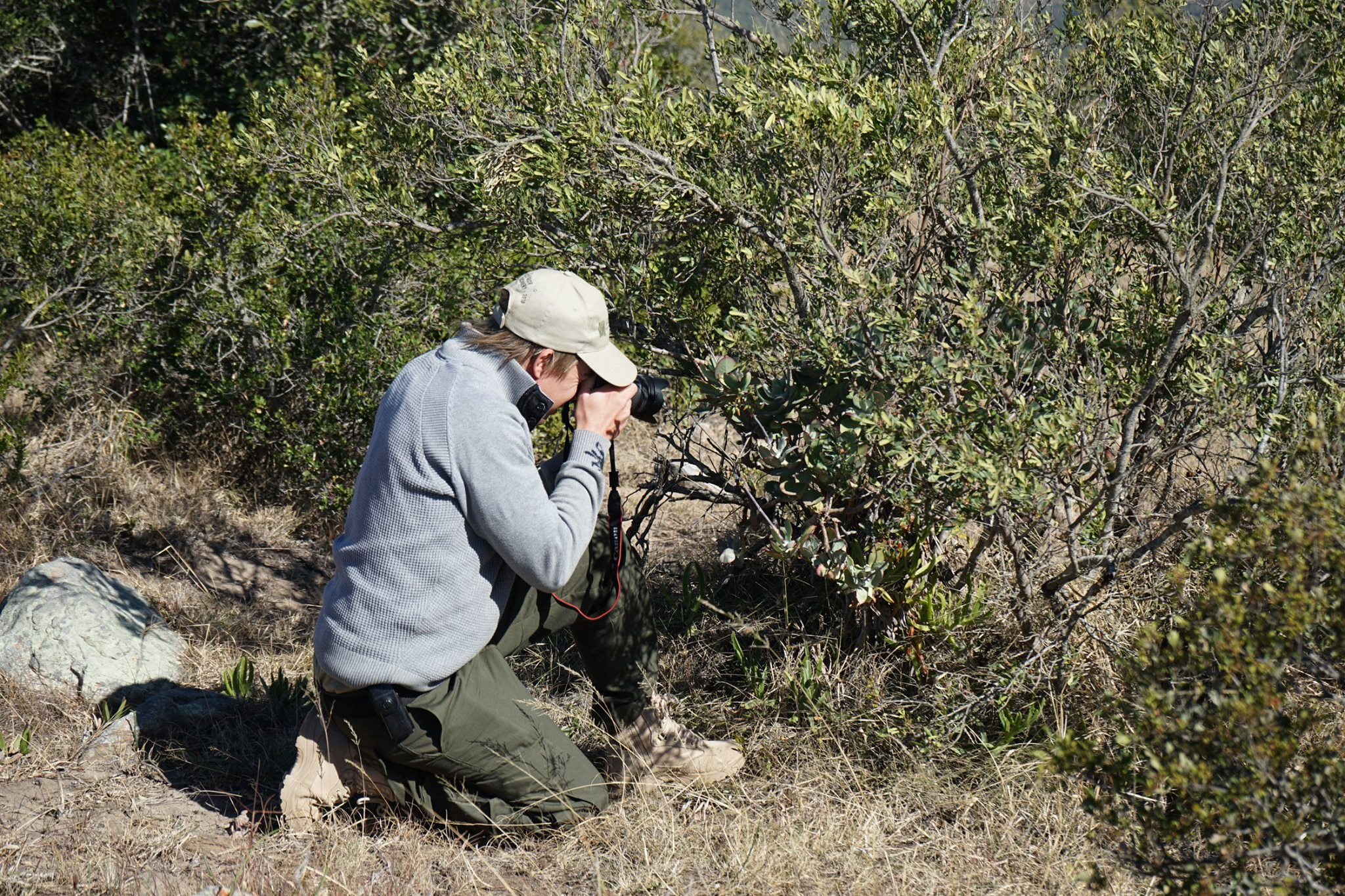 Ranger Diaries Bush Inspection